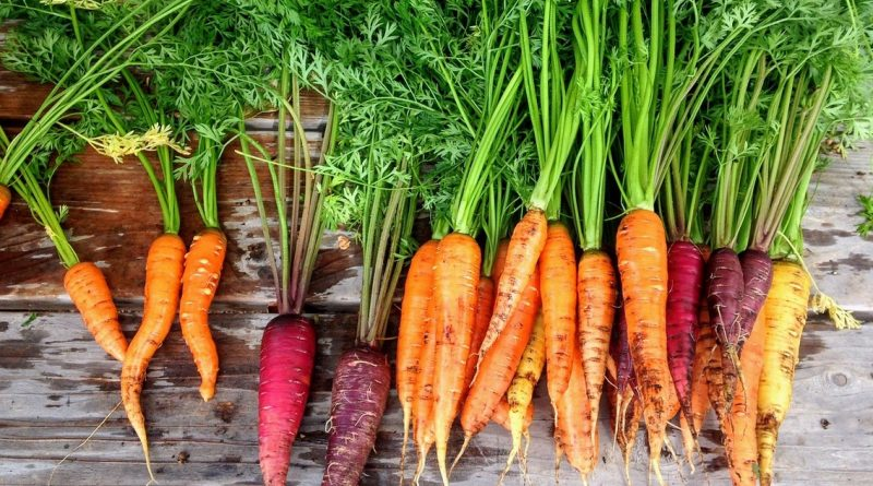 ¿De dónde viene el color de nuestra comida?